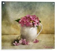 Hydrangea, Acrylic Print