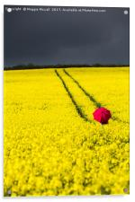 Red and Yellow and..., Acrylic Print
