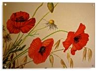 Common Red Poppy with Hare bell and Mayweed, Acrylic Print