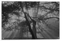 sunrise on a Autumn morning , Acrylic Print