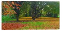 Simple what Autumn is all about , Acrylic Print