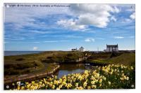 Springtime at the coast, Acrylic Print