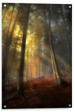 The rays of autumn, Acrylic Print