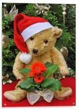Christmas Bear , Acrylic Print