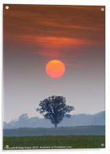 A perfect alignment., Acrylic Print