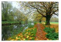 ITCHEN NAVIGATION IN AUTUMN                   , Acrylic Print