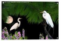 Tropical Paradise, Acrylic Print