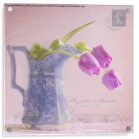 des tulipe, Acrylic Print