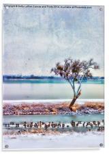 Duck Dynasty, Acrylic Print