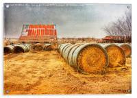 Slumbering in the Countryside, Acrylic Print
