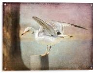 The Landing, Acrylic Print