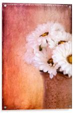 Daisy Delight, Acrylic Print