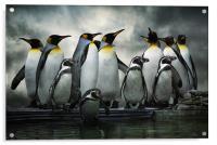 Penguins at Bourton, Acrylic Print