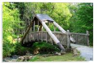 Forest bridge, Acrylic Print