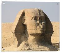 Great Sphinx of Giza 6, Acrylic Print
