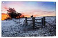 Winter Sunrise, Acrylic Print