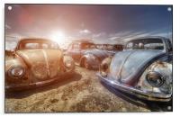 Bugs in the Sun, Acrylic Print