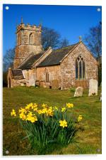 St Andrews Church & Daffodils, Burstock, Dorset, Acrylic Print