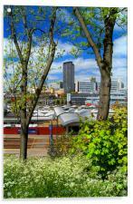Springtime in Sheffield, Acrylic Print