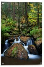 Wyming Brook Nature Reserve, Acrylic Print