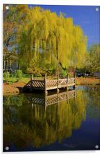 Weston Park Pond, Spring Reflections, Acrylic Print