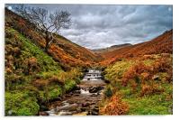 Fair Brook in Autumn, Acrylic Print