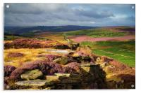 Burbage Rocks and Valley in Summer, Acrylic Print