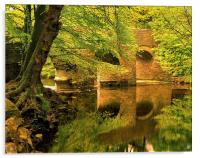 River Plym at Plymbridge, Acrylic Print