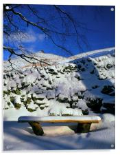 Ringing Roger and Bench in the Snow, Acrylic Print