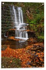 Lumsdale Autumn Leaves and Falls , Acrylic Print
