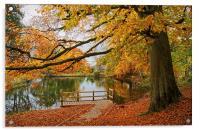 Bentley Brook Mill Pond  , Acrylic Print