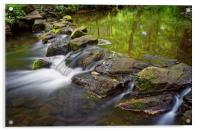 Porter Brook Falls,Endcliffe Park,Sheffield       , Acrylic Print