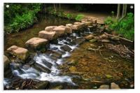 Endcliffe Park Stepping Stones and Falls          , Acrylic Print