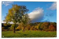 Hope Valley in Autumn                             , Acrylic Print