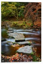 Rivelin Stepping Stones                           , Acrylic Print