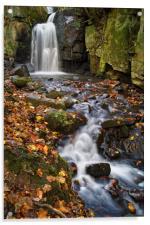 Lumsdale Falls Near Matlock                    , Acrylic Print