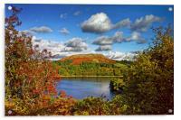 Burrator and Sheepstor In Autumn                  , Acrylic Print