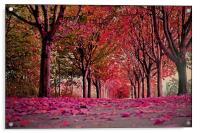 Autumn beauty.., Acrylic Print