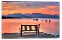 View From The Bench, Acrylic Print