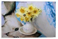 Daffodils, Acrylic Print