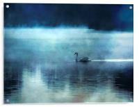 Swan Lake, Acrylic Print