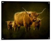 Highlanders, Acrylic Print