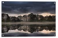 Mirrored Trees, Acrylic Print