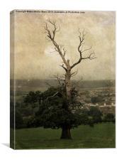 The Skeletal Tree, Canvas Print