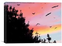 Murder by Sunset, Canvas Print