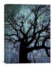Oak Tree in Blue, Canvas Print