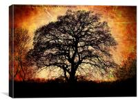 Fiery Winter Tree, Canvas Print