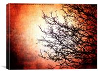 Red and Dead Branches, Canvas Print