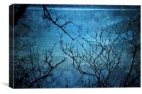 Branches In Blue, Canvas Print