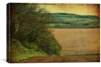 Farmland Hedgerow., Canvas Print